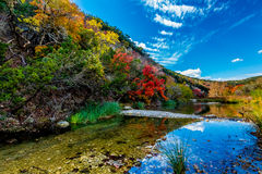 Beautiful Landscape of Fall Foliage and Clear Creek at Lost Maples State Park, Texas Royalty Free Stock Photo