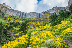 Beautiful landscape of famous Ordesa National Park, Pyrenees, Sp Stock Photo