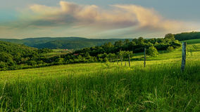 Beautiful landscape, a field of green grass, hills and clouds Stock Photos