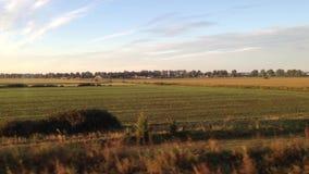 Beautiful Landscape Field in North Poland. stock video
