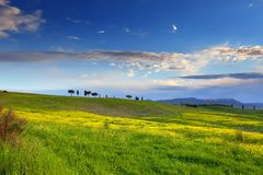 Landscape with field at sunset in Tuscany Stock Photography