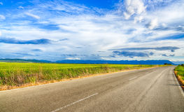 Beautiful landscape field of wheat, road, clouds and mountains Royalty Free Stock Photos