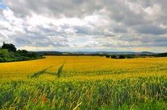 Beautiful landscape (fields) in Fulda, Hessen Royalty Free Stock Photo