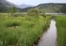 Beautiful landscape fifth Karakol lakes Royalty Free Stock Photo