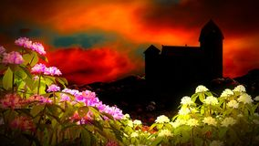 Beautiful landscape with flowers Royalty Free Stock Images