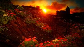Beautiful landscape with flowers Stock Photography