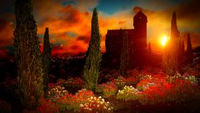 Beautiful landscape with flowers Royalty Free Stock Photography