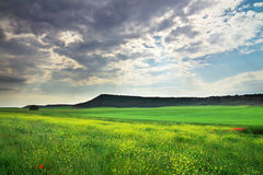 Beautiful landscape Royalty Free Stock Photo