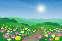 Beautiful Landscape With Flowers. Summer landscape with flowers and road Royalty Free Stock Photos