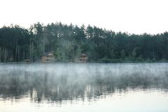 Beautiful landscape with forest and houses near lake. Royalty Free Stock Photography