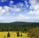 Beautiful landscape with forests Royalty Free Stock Photography