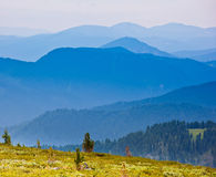 Mountain landscape in sunny summer day Royalty Free Stock Photos