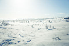 A beautiful landscape of a frozen plains in a snowy winter day Royalty Free Stock Photography