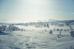 A beautiful landscape of a frozen plains in a snowy winter day Stock Photography
