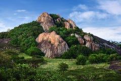 Serengeti national park scenery, Tanzania, Africa Royalty Free Stock Images