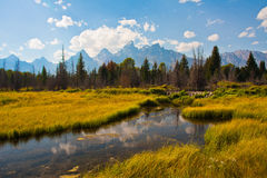 Beautiful Landscape in Grand Teton National Park. The beautiful Teton Reflection in Grand Teton National Park Royalty Free Stock Image