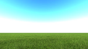 Beautiful landscape, grass clean blue sky Stock Image