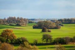 Beautiful landscape of green farmland and blue sky Stock Photos
