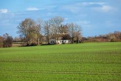 Beautiful landscape of green farmland and blue sky Stock Image