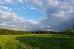 Beautiful landscape. Green field and cloudy sky. Central Russia. Moscow region.  stock photo