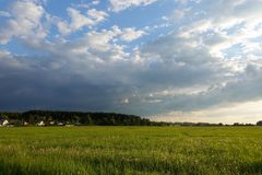 Beautiful landscape. Green field and cloudy sky. Central Russia. Moscow region.  royalty free stock image