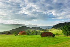 Beautiful landscape with green grass Royalty Free Stock Photography