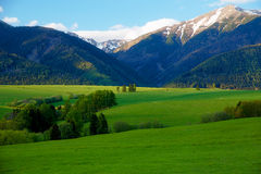 Beautiful landscape, green meadow with snow mountain in background. Slovakia, Central Europe. Royalty Free Stock Photos