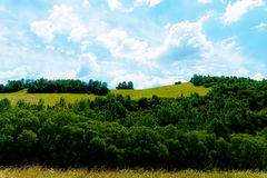 Beautiful landscape, green meadow and trees with beautiful sky. Royalty Free Stock Images