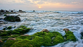 Beautiful landscape with green moss, stone, sunrise on sea Stock Photos