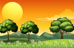 A beautiful landscape Stock Image