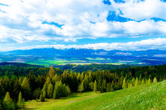 Beautiful landscape, green and yellow meadow with field and snow mountain and village. royalty free stock photos