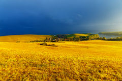 Beautiful landscape, green and yellow meadow and Stock Photo