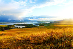 Beautiful landscape, green and yellow meadow and stock images