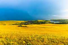Beautiful landscape, green and yellow meadow and Stock Photos