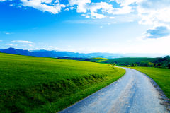 Beautiful landscape, green and yellow meadow with road. Stock Photos