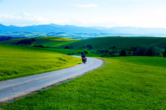Beautiful landscape, green and yellow meadow with road and biker. Royalty Free Stock Image