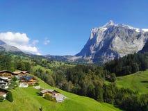 Switzerland. Beautiful landscape in Grindelwald, Switzerland stock photography