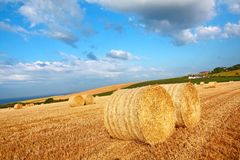 Beautiful landscape with hay bales, Scotland Royalty Free Stock Photo