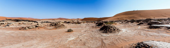 Beautiful landscape of Hidden Vlei in Namib desert panorama Royalty Free Stock Image