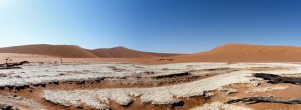 Beautiful landscape of Hidden Vlei in Namib desert panorama. Wide panorama of beautiful sunrise landscape of hidden Dead Vlei in Namib, blue sky, best place of Stock Image