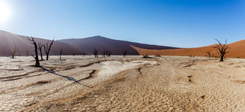 Beautiful landscape of Hidden Vlei in Namib desert panorama Royalty Free Stock Photos