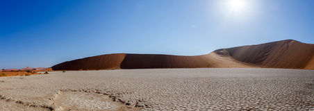 Beautiful landscape of Hidden Vlei in Namib desert panorama. Wide panorama of beautiful sunrise landscape of hidden Dead Vlei in Namib, blue sky, best place of Royalty Free Stock Images
