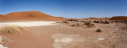 Beautiful landscape of Hidden Vlei in Namib desert panorama Royalty Free Stock Images