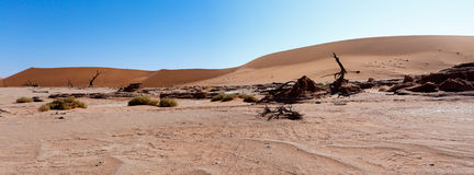 Beautiful landscape of Hidden Vlei in Namib desert panorama Royalty Free Stock Photography