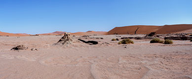 Beautiful landscape of Hidden Vlei in Namib desert panorama Stock Photos