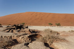 Beautiful landscape of Hidden Vlei in Namib desert panorama Royalty Free Stock Photos