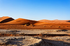 Beautiful landscape of Hidden Vlei in Namib desert. Beautiful sunrise landscape of hidden Dead Vlei in Namib desert with blue sky, this is best place in Namibia Stock Photography