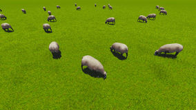 Beautiful landscape - hills covered by green grass. With herds of sheep 3d rendering 3 Stock Photo