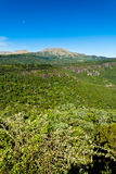 Beautiful landscape of Hogsback mountain Royalty Free Stock Images