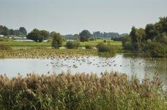 Beautiful landscape of Holland stock photos